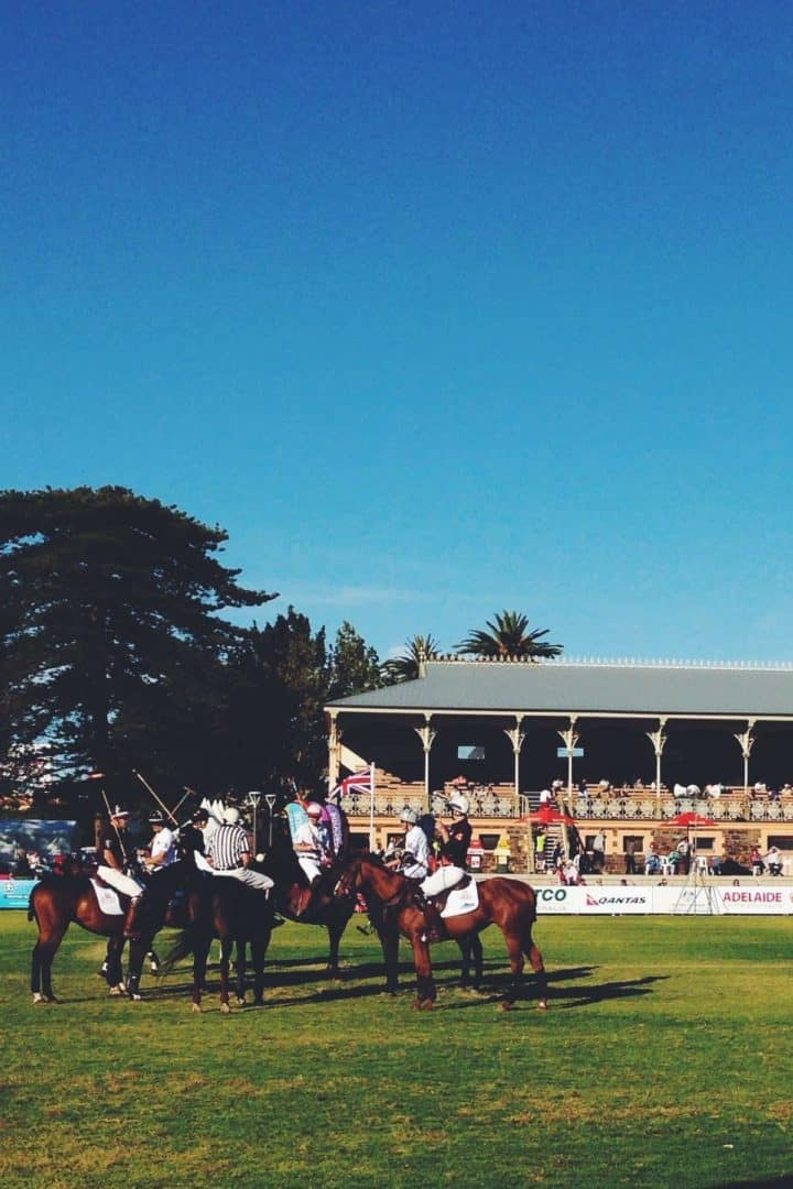 polo match Adelaide