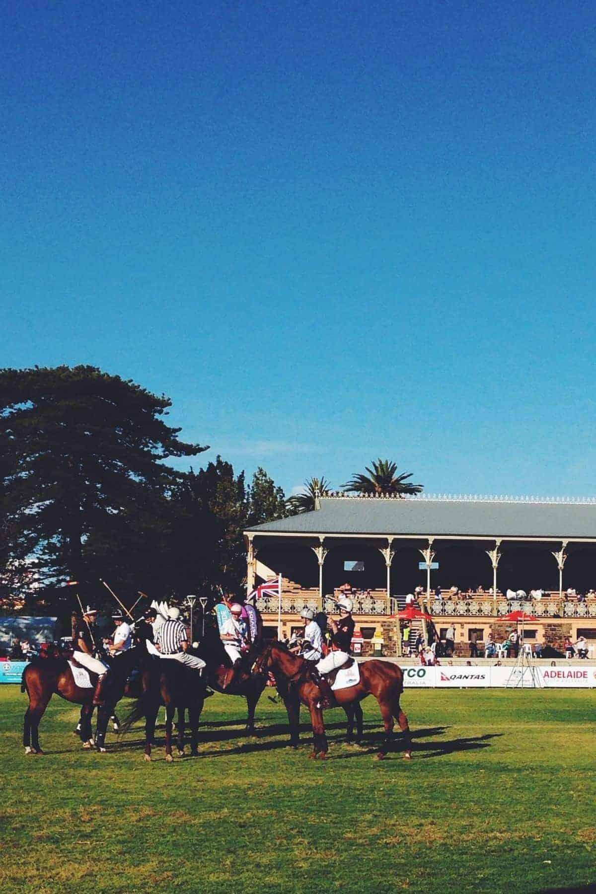 polo match Adelaide