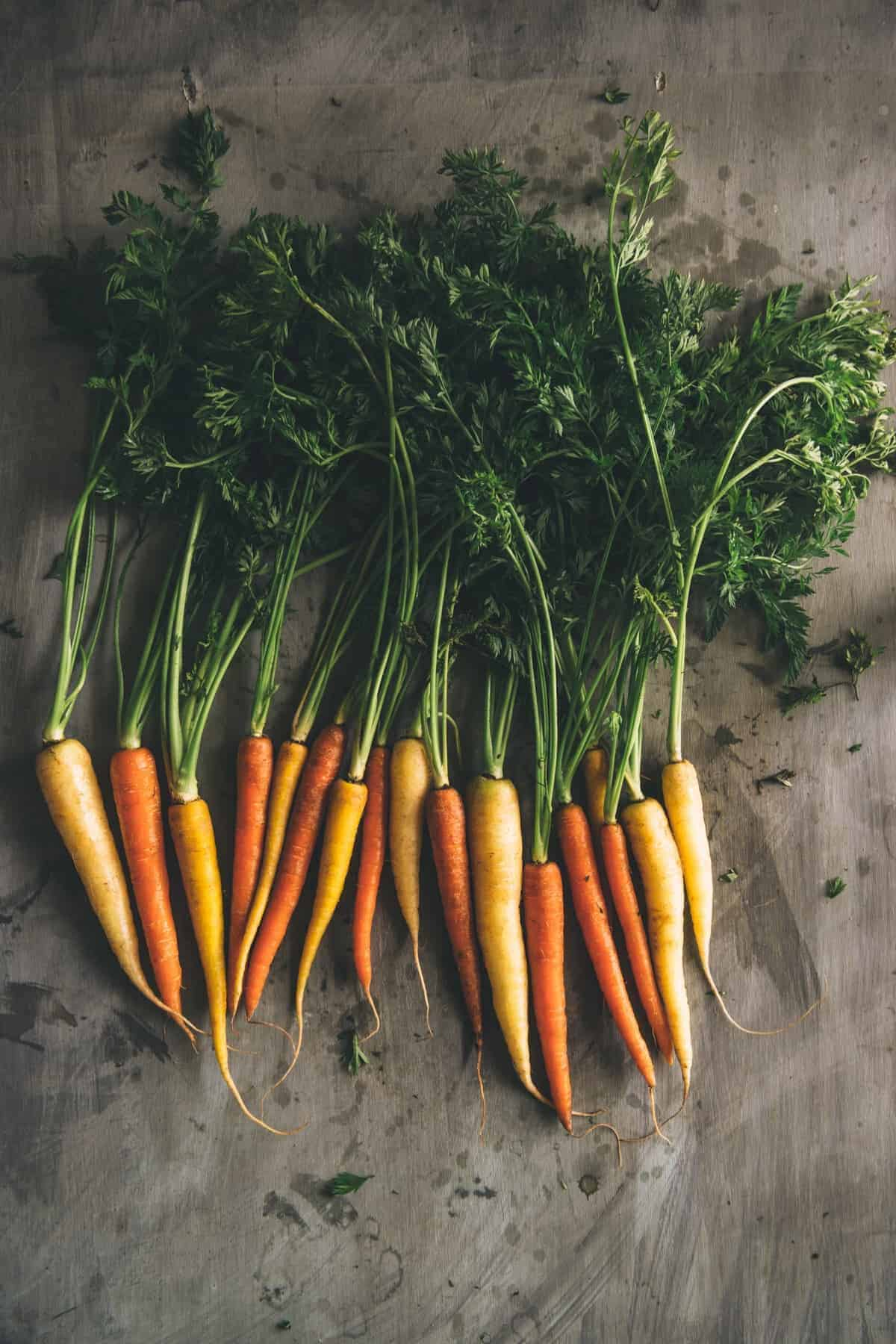 heirloom carrots laid out on a table