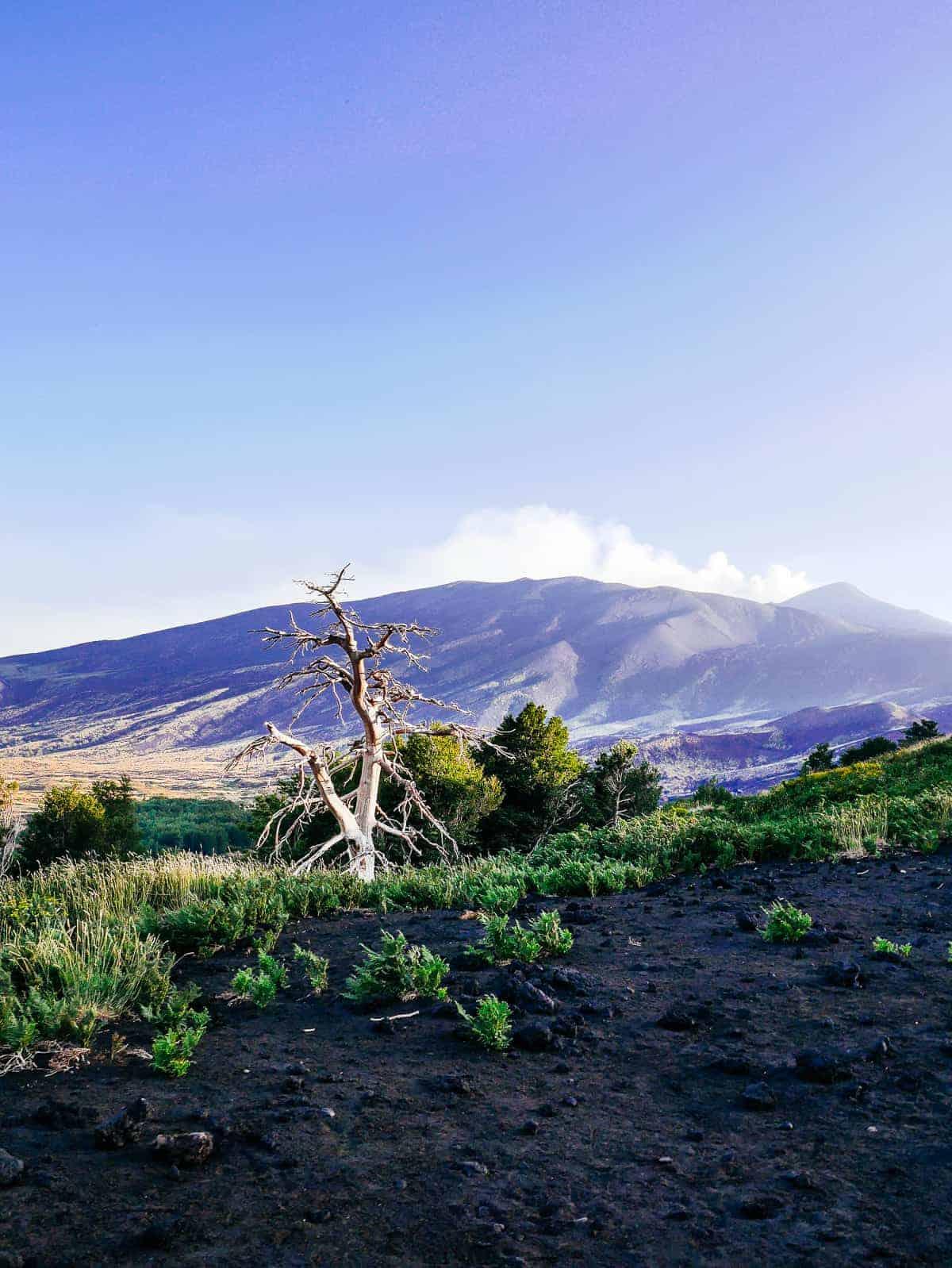 Mout Etna Sicily