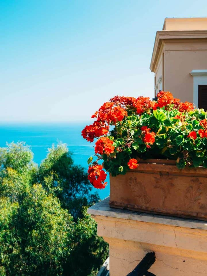 flowers on balcony of old hotel
